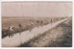 ° 17 ° ROCHEFORT ° LA CARPE ROCHEFORTAISE ° CONCOURS DE VERMEE Du 3 Juin 1934 ° CARTE PHOTO MICHEAU ° - Rochefort