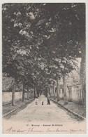 CPA 91 BRUNOY Avenue St Hilaire - Brunoy