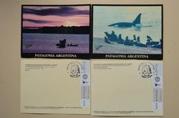 Argentina Lot 2 CP Patagonia Orque Baleine FDC ANTAR Patagonie Argentine - Whales