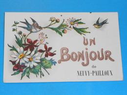 36 ) Un Bonjour De Neuvy-pailloux : Année 1925 : EDIT : - France