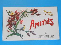 36 ) Amitiés De Neuvy-pailloux : Année 1925 : EDIT : - France