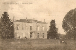 Cpa St Hilaire La Palud Chateau De Sasais - France