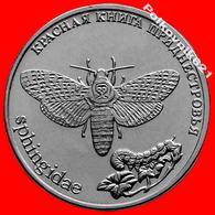 Transnistria / Moldova 1 Ruble 2018 Red Book Night Butterfly New! - Moldavie