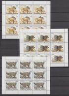 Tajikistan 08.06.1993 Mi # 24-26 Kleinbogensatz (3) Endangered Mammals MNH OG - Tadjikistan