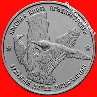 Transnistria / Moldova 1 Ruble 2018 Red Book. Green Woodpecker. New! - Moldova