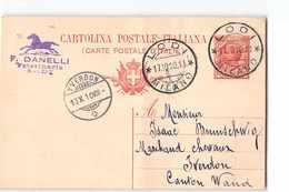 16870 DANELLI VETERINARIO LODI X YVERDON - 1900-44 Vittorio Emanuele III