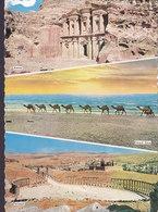 Jordan PPC Petra Dead Sea Jerash AMMAN 1975 NYBORG Denmark Fish Fisch Poisson (2 Scans) - Jordanien