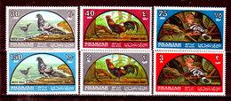 Sharjah-0001 - Posta Aerea: Fauna Avicola Indigena 1965 (++) MNH - Senza Difetti Occulti. - Francobolli