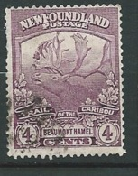 Terre Neuve - Yvert N° 103 Oblitéré    - Cw34240 - 1908-1947