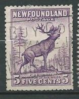 Terre Neuve - Yvert N° 175 A    Oblitéré    - Cw34246 - 1908-1947