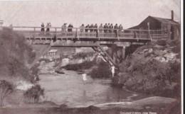 AM94 New Zealand Postcard - Children Jumping From Bridge - New Zealand