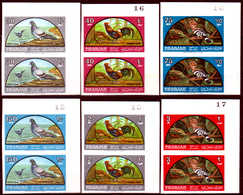 Sharjah-0003 - Posta Aerea: Fauna Avicola Indigena 1965 (++) MNH - NON DENTELLATI.!!!?????????? - Francobolli