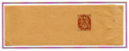 France 2c Blanc Entier Bande Journal  Neuf N° 108 Y. Et T. - Marcophilie (Lettres)