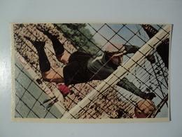 CARTE FOOTBALL BERNARD. ANNEES 60. PLONGEON HORIZONTAL D UN GARDIEN DE BUT MIROIR SPRINT. - Football