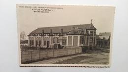"Mol Achterbosch (Anvers) - ""Salus Nostra"" - Mol"
