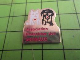 313H Pin's Pins / Rare Et De Belle Qualité !!! THEME ANIMAUX : 2 CHIENS ASSOCIATION PROTECTRICE DES ANIMAUX - Animaux