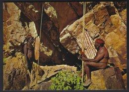 CP Etco E312- Australia,Jessie Gap Rock And Aborigines,Northern Territory . Non Circulé-unused - Océanie