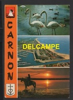 DF / 34 HERAULT / MAUGUIO - CARNON / CARNON-PLAGE / CARTE MULTIVUES / 1987 - Mauguio