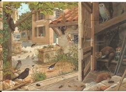 CPM Illustrée Animaux Village - Oiseaux (pinson, Mésange, Hibou, Pigeon) - Souris, Rat, Belette, Insectes - Contemporain (à Partir De 1950)