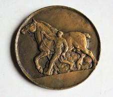 Médaille Bronze élevage Cheval équitation Signé H B Henri Bouchard Fer à Cheval Selle Cravache - Frankrijk