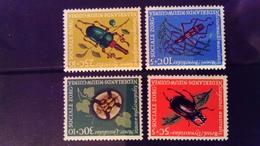 Nouvelle Guinée Néerlandaise Dutch New Guinea 1961 Animal Insecte Insect Yvert 64-67 ** MNH - Netherlands New Guinea