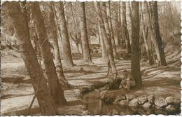 D37 - CHATEAU LA VALLIERE - LA SOURCE - Hommes Assis Près De L'eau Contre Un Arbre - CPSM Dentelée Petit Format - Autres Communes