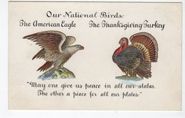 """USA, """"Our National Birds. The American Eagle, The Thanksgiving Turkey...."""". Pre-1920 Postcard - Thanksgiving"""