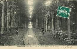 78* MENUCOURT  Bois – Chasse     MA81.629 - Non Classés