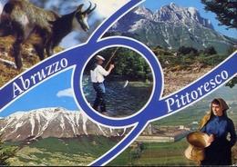 Abruzzo Pittooresca - 18 - Formato Grande Viaggiata – E 9 - Italy