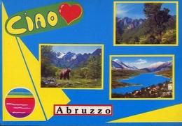 Abruzzo Pittoresca - 46 - Formato Grande Viaggiata – E 9 - Italy