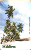 Maldives - MAL-C-28B, Palmtrees, Trees, Seaside. Boat, 1/04, Used As Scan - Maldiven