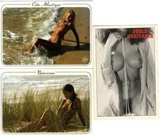 NUES  LOT 3  CARTES MODERNES  NATURISME  BAIGNADE SAUVAGE - Bellezza Femminile Di Una Volta (1921-1940)