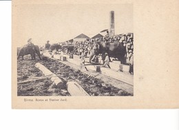 Old Pc Burma Elephant Timber Yard - Myanmar (Burma)