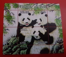2011- MALAWI-Bears PANDA- Sheet MNH** - Malawi (1964-...)