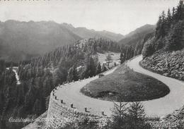 Casteltesino M.840 Strada De Broccone (f.g.) - Trento