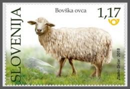 H01 Slovenia 2018 Bovec Sheep MNH Postfrisch - Slovénie