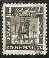 LIBIA LIBYA 1951 REGNO INDIPENDENTE EMISSIONE PER LA CIRENAICA CYRENAICA 1m USATO USED OBLITERE' - Libia