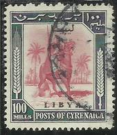 LIBIA LIBYA 1951 REGNO INDIPENDENTE EMISSIONE PER LA CIRENAICA CYRENAICA 100m USATO USED OBLITERE' - Libia