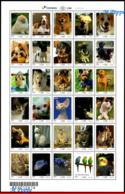 Ref. BR-V2018-09 BRAZIL 2018 ANIMALS, FAUNA, PETS, UPAEP, DOGS, CATS,,RABBIT, FISH, BIRDS, SHEET MNH, 30V - Fishes