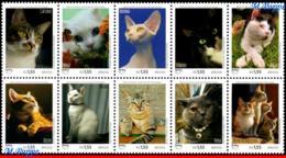 Ref. BR-V2018-09-2 BRAZIL 2018 - ANIMALS, FAUNA, PETS, UPAEP, AMERICA, SERIES, CATS, SET MNH,10V - Unused Stamps