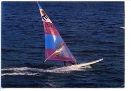 CPSM / CPM  10.5 X 15 Windsurfers En Méditerranée     Planche à Voile - Non Classés