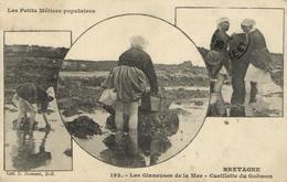 1 Cpa Les Petis Métiers Populaires - Les Glaneuses De La Mer - Cueillette Du Goëmon - Non Classés