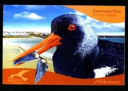 Alderney Aurigny 2009 Yvertn° Carnet Booklet C352 *** MNH Cote 50 Euro Faune Oiseaux Vogels Birds - Alderney