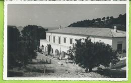 ESPAGNE  CPSM  Iles Baleares  HOTEL CARABELA Paguera Mallorca Ecrite N018 - Mallorca