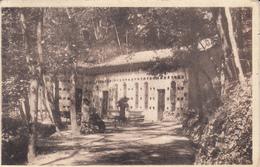 169 -  Sant'Andrea Di Medesano - Italie