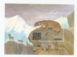 T. Russia USSR Soviet Stamp 1985 Wildlife Wild Animals Leopard Panther - Block Souvenir Sheet W/ No. 212513 - 1923-1991 URSS