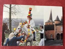 België Belgique Belgien Belgium. Galmaarden. Pauwelviering. Baljuwhuis ( Paard ) - Galmaarden