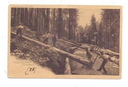 LANDWIRTSCHAFT - Holzschläger Im Schwarzwald, Rücks. Kleberest - Landwirtschaft