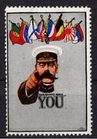 VIGNETTE PATRIOTIQUE 1914 PATRIOTIC CINDERELLA STAMP - Erinnophilie