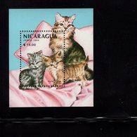 673697353 NICARAGUA 1988 POSTFRIS MINT NEVER HINGED POSTFRISCH EINWANDFREI SCOTT 1710 HOUSE CAT KITTENS - Nicaragua